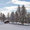 Neve a San Genesio