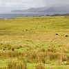 Isole Ebridi