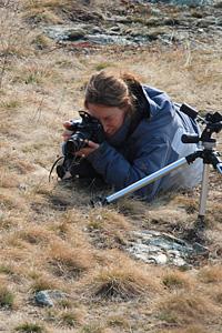 Eleonora sfida i suoi nemici ragni per fotografare le pulsatille