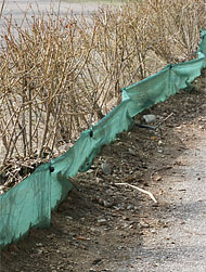 Barriere per gli anfibi